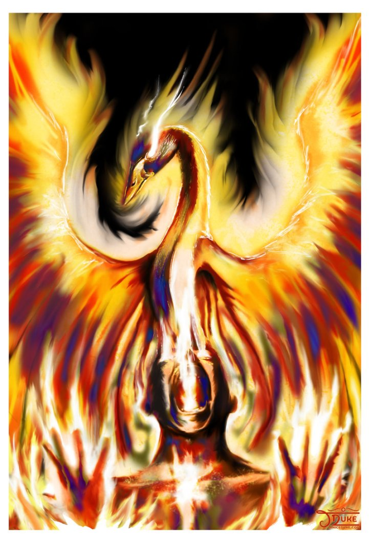 Phoenix Rising © Janice Duke. Illustration. Personal work.