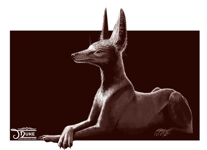anubis_the_jackal_by_janiceduke